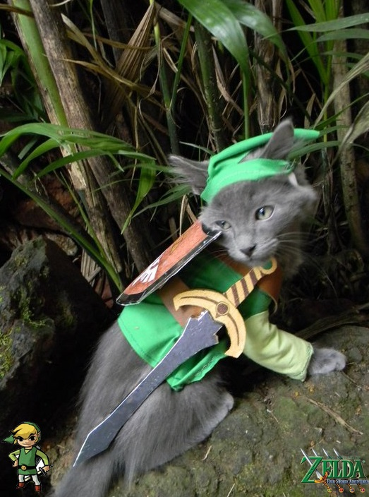 cosplay-legend-of-zelda-link-cat-costume-01