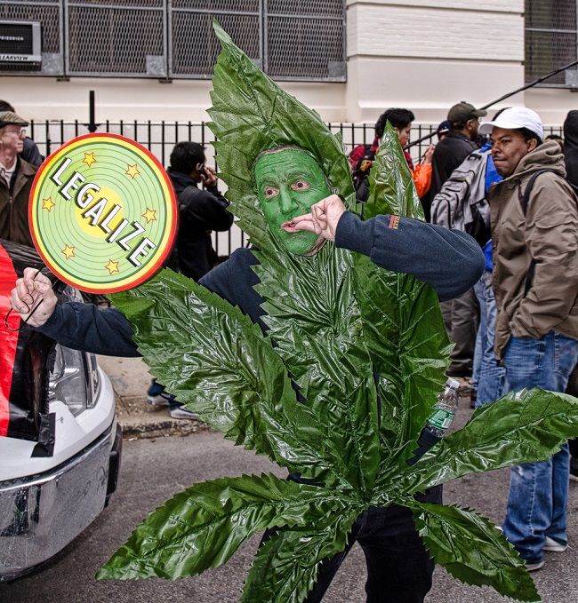 cosplay-weed-marijuana-legalize-it-costume